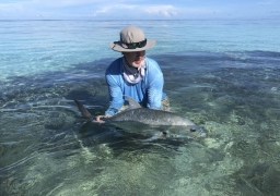 Weekly Fishing Updates in Seychelles